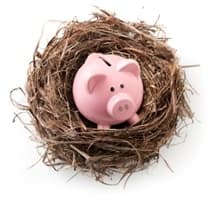 Piggy bank in a nest