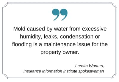 Does Your Insurance Cover Water Damage