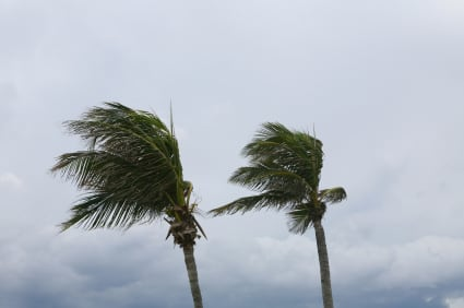Hurricane home insurance
