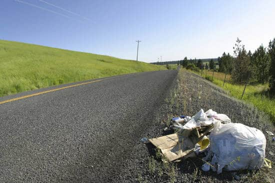 Roadside litter