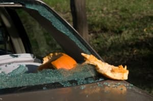 window smashed by pumpkin
