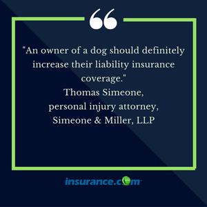Pet insurance 1